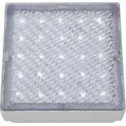 9913WH LED Outdoor Walkover Light IP68 White